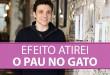 Efeito Atirei o Pau no Gato | Erico Rocha