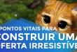 5 PONTOS VITAIS PARA CONSTRUIR UMA OFERTA IRRESISTÍVEL | ERICO ROCHA | PARTE 133 DE 365