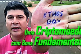 Ethos BQX: Uma Criptomoeda Com Bons Fundamentos e a Proposta de uma Carteira Universal